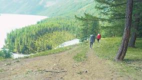 Altai, Kucherla, RUSSIE - juin, 20, 2018 : Touristes dans la forêt d'Altai vers le haut Aventure et tourisme d'aventure banque de vidéos