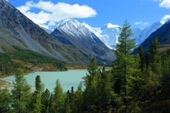 altai Lago Akkemskoe Immagine Stock Libera da Diritti