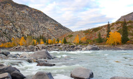 Altai landscape. Altai mountains river a  indian summer Stock Photo