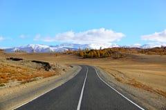 Altai landscape. Mountain landscape on altai in siberia Stock Image