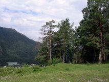 Altai landscape Royalty Free Stock Photography