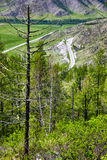 Altai landscapes from mountain pass Chike-Taman Royalty Free Stock Photo