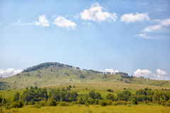 Altai meadows Royalty Free Stock Image