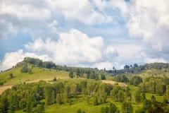 Altai meadows Stock Photos