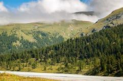 Altai, montagne di Altai, Akkem River Valley Immagini Stock