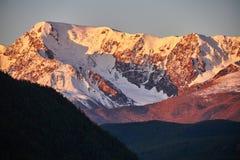 Altai, montagne innevate al tramonto Il sole di sera splende sulle montagne, il paesaggio l'Altai di autunno Rumore e sfuocatura Immagini Stock