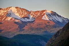 Altai, montagne innevate al tramonto Il sole di sera splende sulle montagne, il paesaggio l'Altai di autunno Rumore e sfuocatura Fotografia Stock