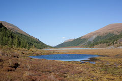 Altai mountain lake Royalty Free Stock Photos