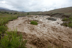 Altai mountain rapid muddy river Stock Images