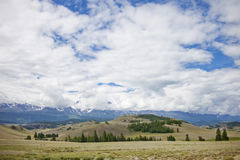 Altai mountain summer landscape Stock Photography