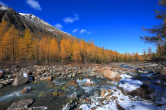 Altai Mountains Royalty Free Stock Photography