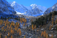 Altai Mountains Royalty Free Stock Photos