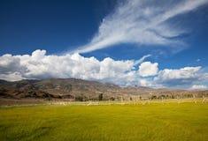 Altai Royalty Free Stock Photos
