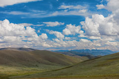 Altai mountains. Beautiful highland landscape. Mongolia.  Stock Images