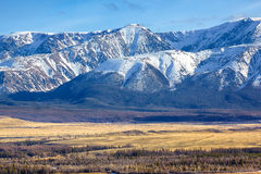 Altai mountains in Kurai area with North Chuisky Ridge on backgr Stock Images