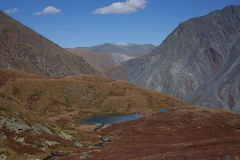 Altai mountains and lake Royalty Free Stock Image