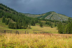 Altai mountains in Russia Royalty Free Stock Photography