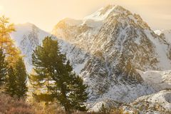 Free Altai Mountains, Russia, Siberia. Stock Photography - 123559602