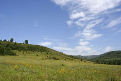 The Altai mountains in the summer. Royalty Free Stock Photos