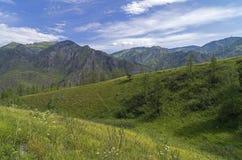 Altai Mountains. Royalty Free Stock Photos
