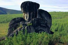 Altai natura Fotografia Stock