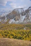Altai nella caduta Fotografia Stock Libera da Diritti