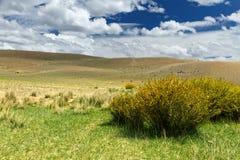 Altai: nuvole delle colline della steppa Fotografia Stock Libera da Diritti