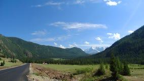altai Paesaggio della montagna Immagine Stock
