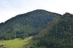 Altai, paesaggio rurale Immagine Stock Libera da Diritti