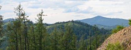 Altai, paesaggio rurale Immagini Stock Libere da Diritti