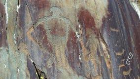 Altai. Petroglyphs Tracts Kalbak-Tash. Stock Images