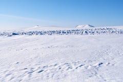 Altai plain il paesaggio dell'inverno con il campo di neve sotto cielo blu Fotografia Stock Libera da Diritti