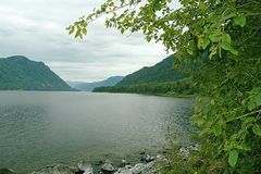 altai podpalany gorny jeziora kamienia teletskoye Obraz Stock