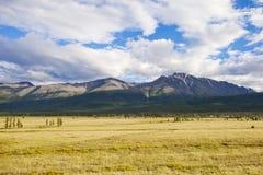 Altai republic nature mountain summer landscape. Russia Stock Photo