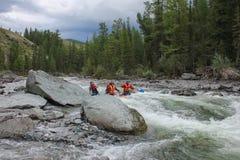 Altai republika Krańcowy flisactwo na Bashkaus rzece zdjęcie royalty free