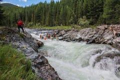 Altai republika Krańcowy flisactwo na Bashkaus rzece obrazy royalty free