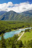 Altai river Katun Stock Photography