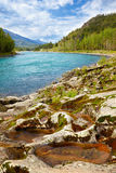 Altai river Katun Royalty Free Stock Image