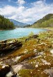 Altai river Katun Stock Photos