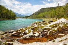 Altai river Katun Royalty Free Stock Photography