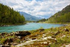 Altai river Katun Royalty Free Stock Images