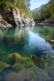 Altai river Kumir Royalty Free Stock Photography