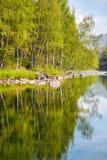 Altai river Kumir Royalty Free Stock Photos