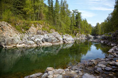 Altai river Kumir Royalty Free Stock Images