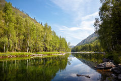 Altai river Kumir Royalty Free Stock Photography
