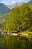 Altai river Kumir Stock Photos