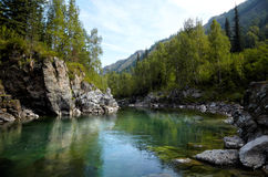 Altai river Kumir Stock Photography