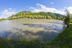 Altai: River Stock Photo