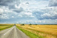 Altai road Royalty Free Stock Image