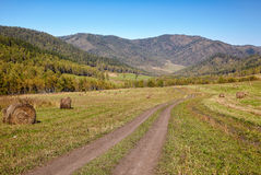 Altai road Royalty Free Stock Images